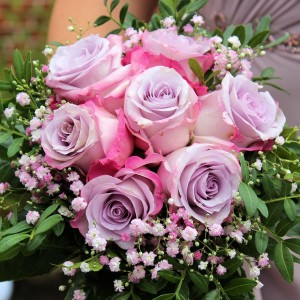 roses-712376_1280